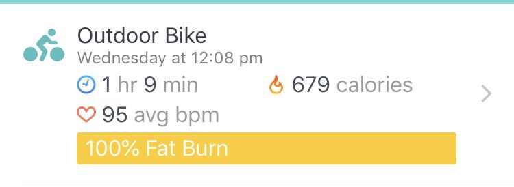 FitBit OutDoor Bike